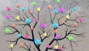 pájaros geocrom